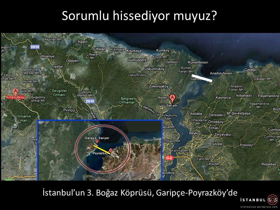 Sorumlu hissediyor muyuz? İstanbul'un 3. Boğaz Köprüsü, Garipçe-Poyrazköy'de
