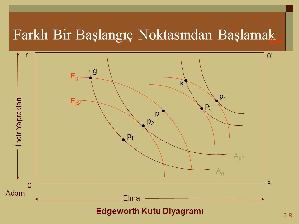3-8 Farklı Bir Başlangıç Noktasından Başlamak Edgeworth Kutu Diyagramı Adam Eve 0 0' s r Elma İncir Yaprakları AgAg EgEg g p1p1 p E p2 A p2 p2p2 p3p3
