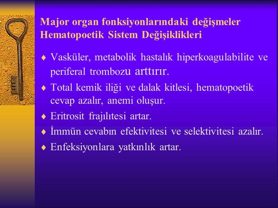 Major organ fonksiyonlarındaki değişmeler Kas iskelet Sistemi Değişiklikleri  İntervertebral aralıklar daralır, vertebral kolon kısalır, intervertebral foramenler kapanır.