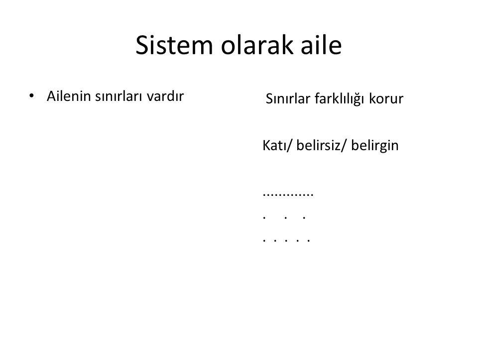 Sistem olarak aile Ailenin sınırları vardır Sınırlar farklılığı korur Katı/ belirsiz/ belirgin.....................