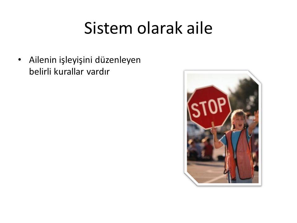 Sistem olarak aile Ailenin işleyişini düzenleyen belirli kurallar vardır