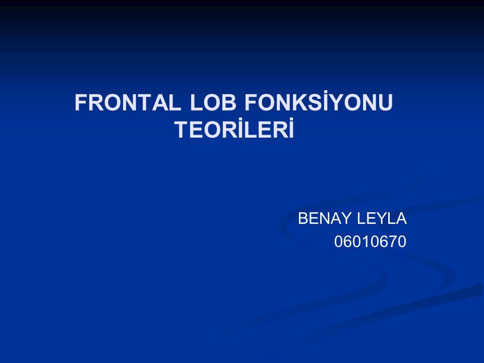 FRONTAL LOB FONKSİYONU TEORİLERİ BENAY LEYLA 06010670