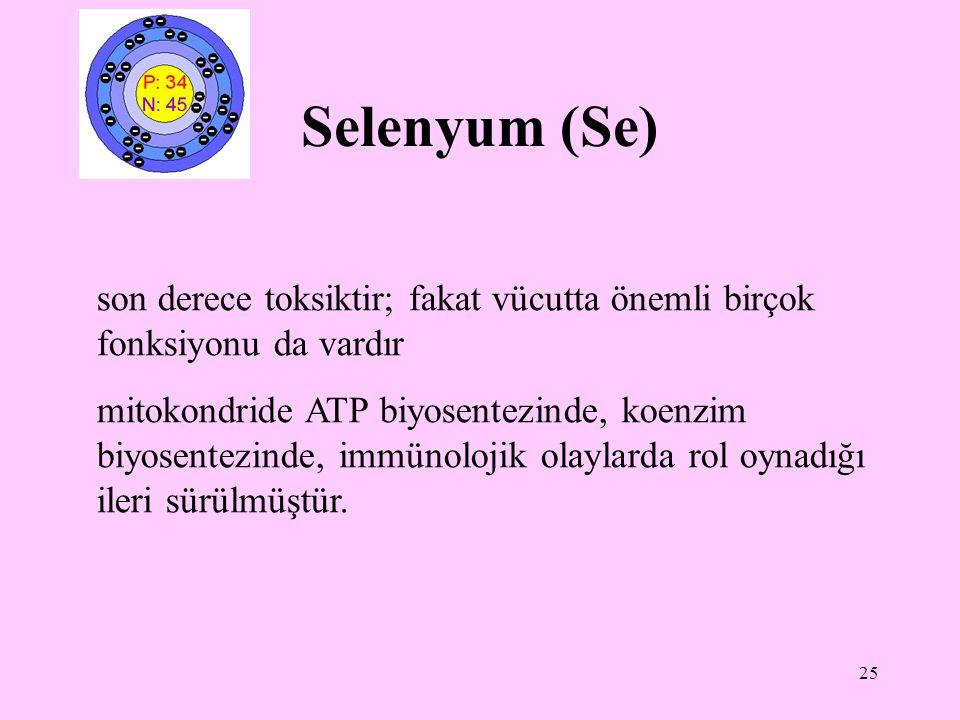 25 Selenyum (Se) son derece toksiktir; fakat vücutta önemli birçok fonksiyonu da vardır mitokondride ATP biyosentezinde, koenzim biyosentezinde, immün