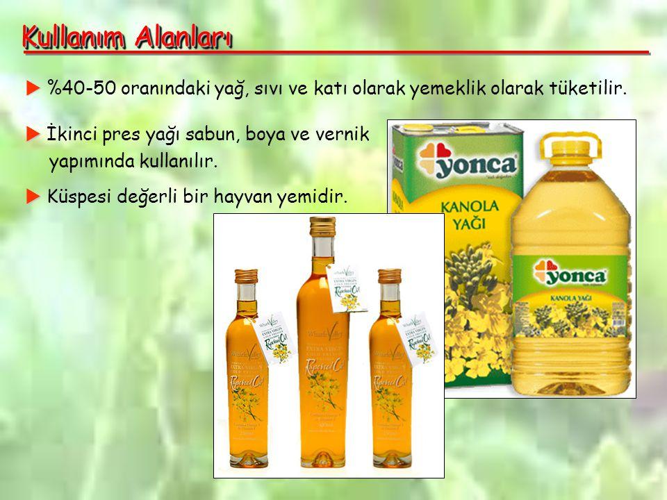 Kullanım Alanları   %40-50 oranındaki yağ, sıvı ve katı olarak yemeklik olarak tüketilir.