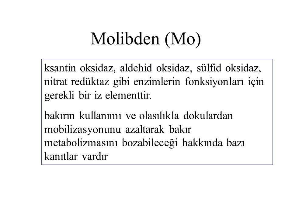 Molibden (Mo) ksantin oksidaz, aldehid oksidaz, sülfid oksidaz, nitrat redüktaz gibi enzimlerin fonksiyonları için gerekli bir iz elementtir. bakırın