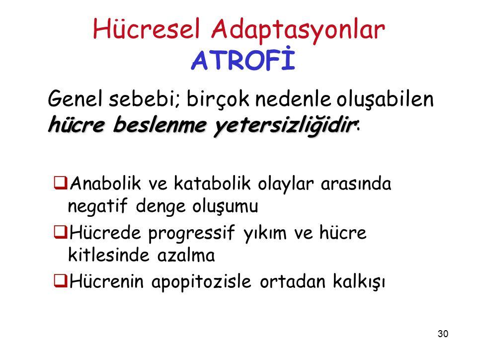 30 Hücresel Adaptasyonlar ATROFİ hücre beslenme yetersizliğidir Genel sebebi; birçok nedenle oluşabilen hücre beslenme yetersizliğidir: hücre beslenme