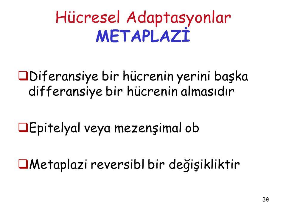 39 Hücresel Adaptasyonlar METAPLAZİ  Diferansiye bir hücrenin yerini başka differansiye bir hücrenin almasıdır  Epitelyal veya mezenşimal ob  Metap