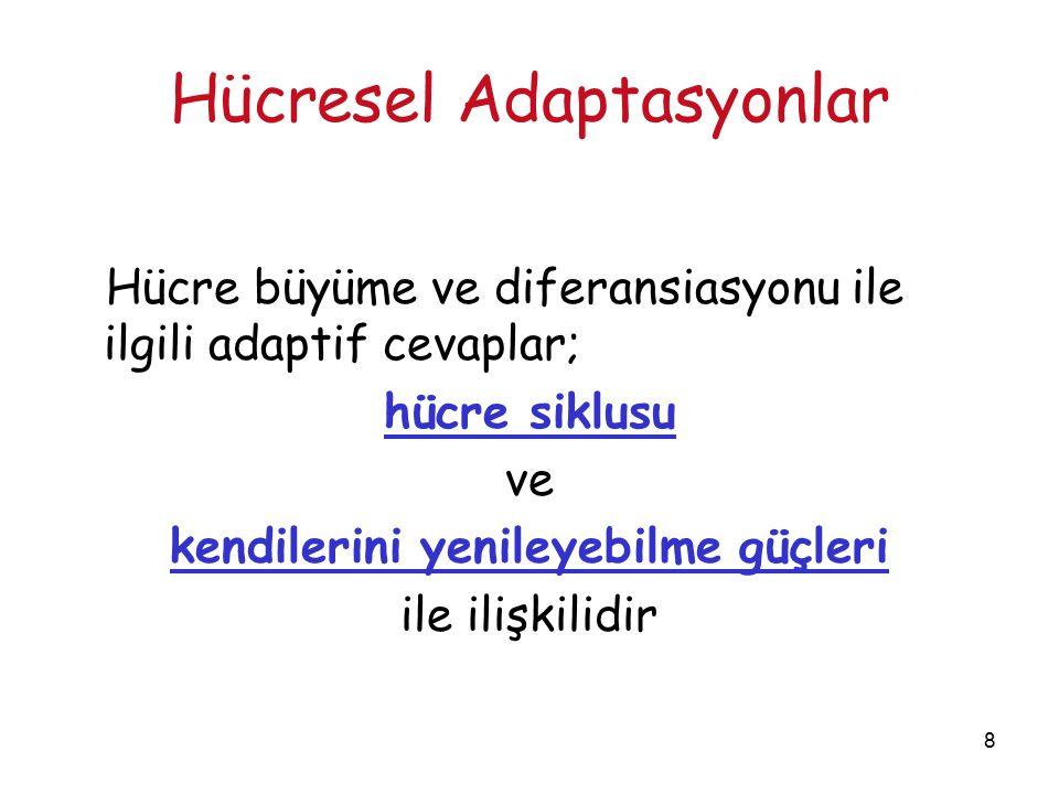 39 Hücresel Adaptasyonlar METAPLAZİ  Diferansiye bir hücrenin yerini başka differansiye bir hücrenin almasıdır  Epitelyal veya mezenşimal ob  Metaplazi reversibl bir değişikliktir