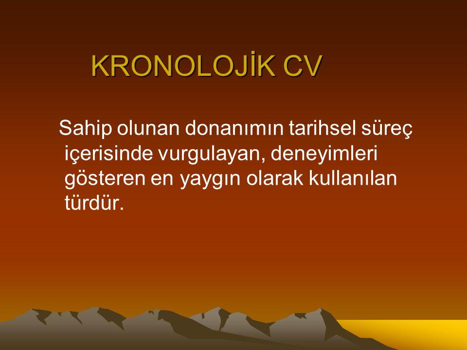 KARMA CV Hem işlevsel hem de kronolojik cv şeklinin bir arada kullanıldığı türdür.
