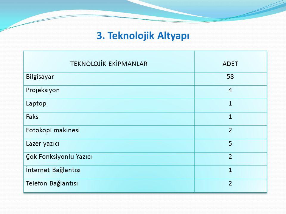 3. Teknolojik Altyapı
