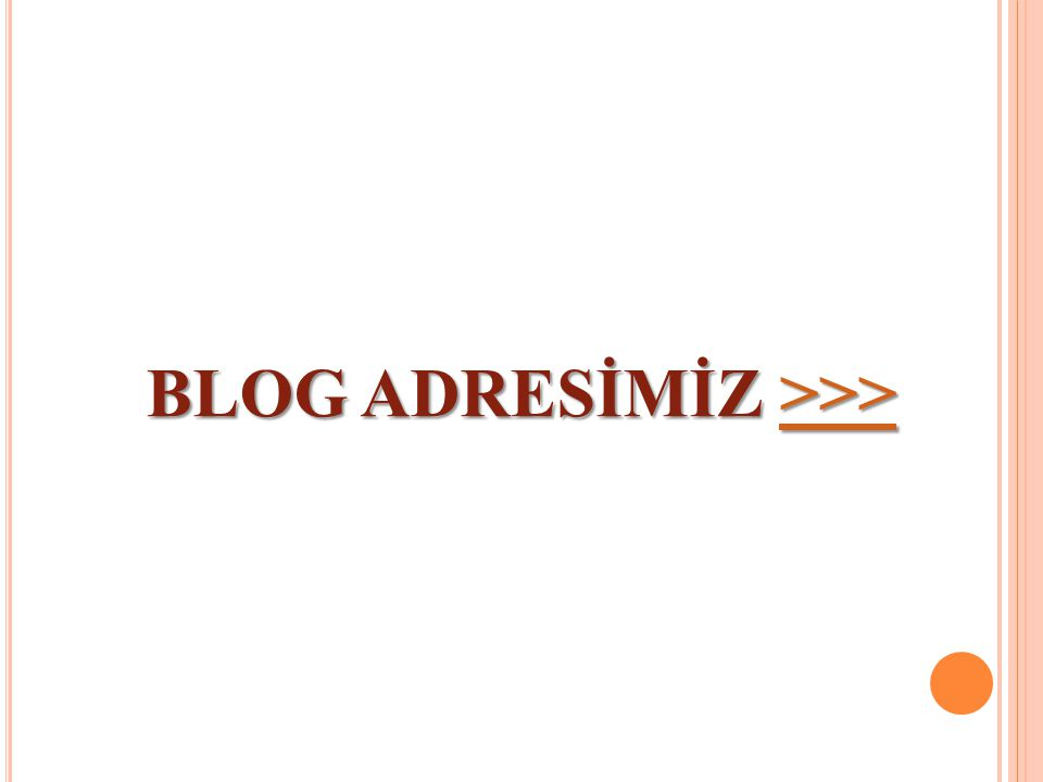 BLOG ADRESİMİZ >>> >>>