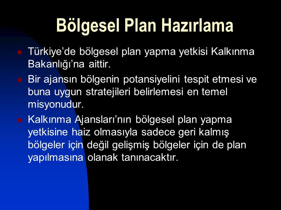 Türkiye'de bölgesel plan yapma yetkisi Kalkınma Bakanlığı'na aittir. Bir ajansın bölgenin potansiyelini tespit etmesi ve buna uygun stratejileri belir