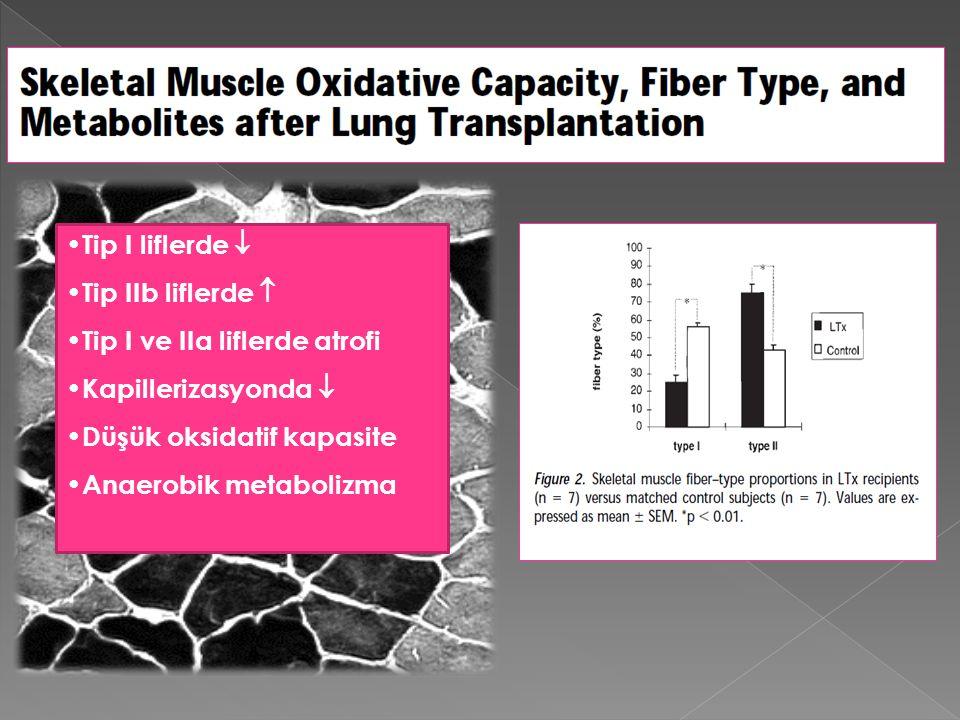Tip I liflerde  Tip IIb liflerde  Tip I ve IIa liflerde atrofi Kapillerizasyonda  Düşük oksidatif kapasite Anaerobik metabolizma
