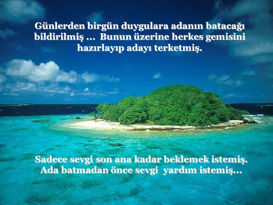 Uzun yıllar önce tüm insani duyguların yaşamakta olduğu bir ada varmış: Uzun yıllar önce tüm insani duyguların yaşamakta olduğu bir ada varmış: iyimse
