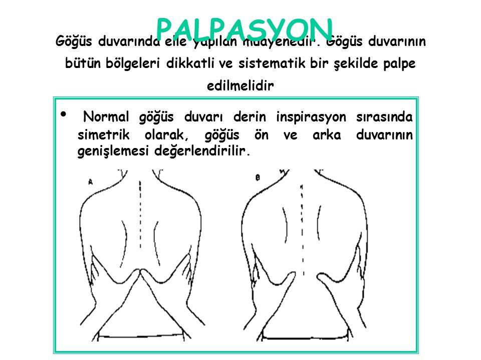Göğüs duvarında elle yapılan muayenedir. Gögüs duvarının bütün bölgeleri dikkatli ve sistematik bir şekilde palpe edilmelidir Normal göğüs duvarı deri