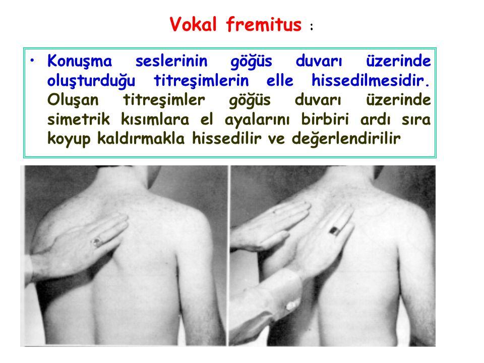 Vokal fremitus : Konuşma seslerinin göğüs duvarı üzerinde oluşturduğu titreşimlerin elle hissedilmesidir. Oluşan titreşimler göğüs duvarı üzerinde sim