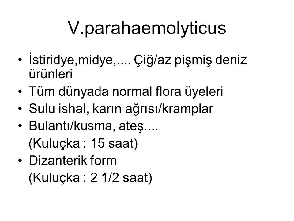 V.parahaemolyticus İstiridye,midye,.... Çiğ/az pişmiş deniz ürünleri Tüm dünyada normal flora üyeleri Sulu ishal, karın ağrısı/kramplar Bulantı/kusma,