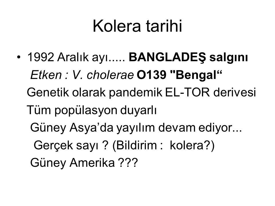 1992 Aralık ayı..... BANGLADEŞ salgını Etken : V. cholerae O139