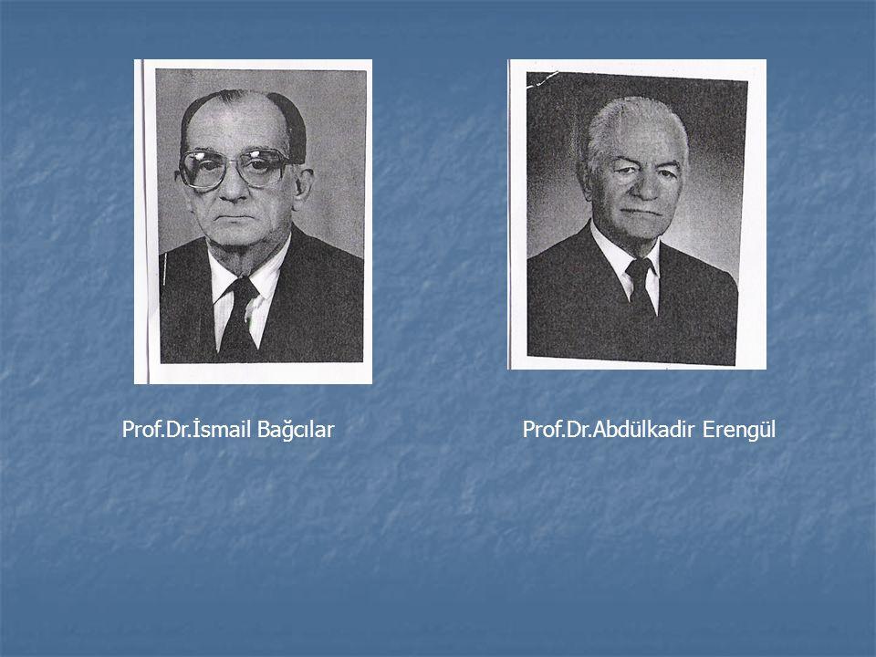 Prof.Dr.İsmail BağcılarProf.Dr.Abdülkadir Erengül