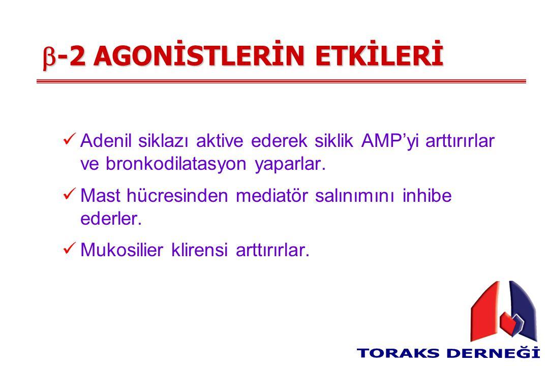  -2 AGONİSTLERİN ETKİLERİ Adenil siklazı aktive ederek siklik AMP'yi arttırırlar ve bronkodilatasyon yaparlar.