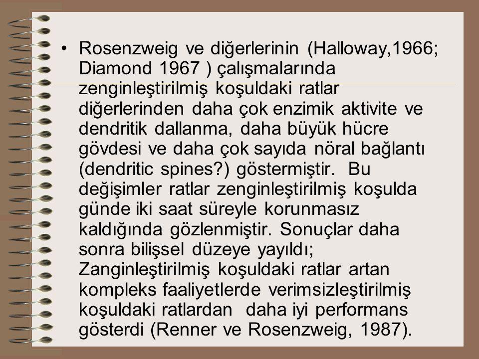 Rosenzweig ve diğerlerinin (Halloway,1966; Diamond 1967 ) çalışmalarında zenginleştirilmiş koşuldaki ratlar diğerlerinden daha çok enzimik aktivite ve