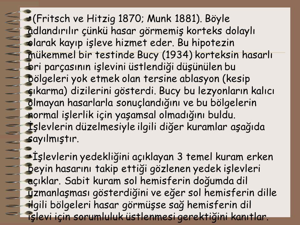 (Fritsch ve Hitzig 1870; Munk 1881). Böyle adlandırılır çünkü hasar görmemiş korteks dolaylı olarak kayıp işleve hizmet eder. Bu hipotezin mükemmel bi