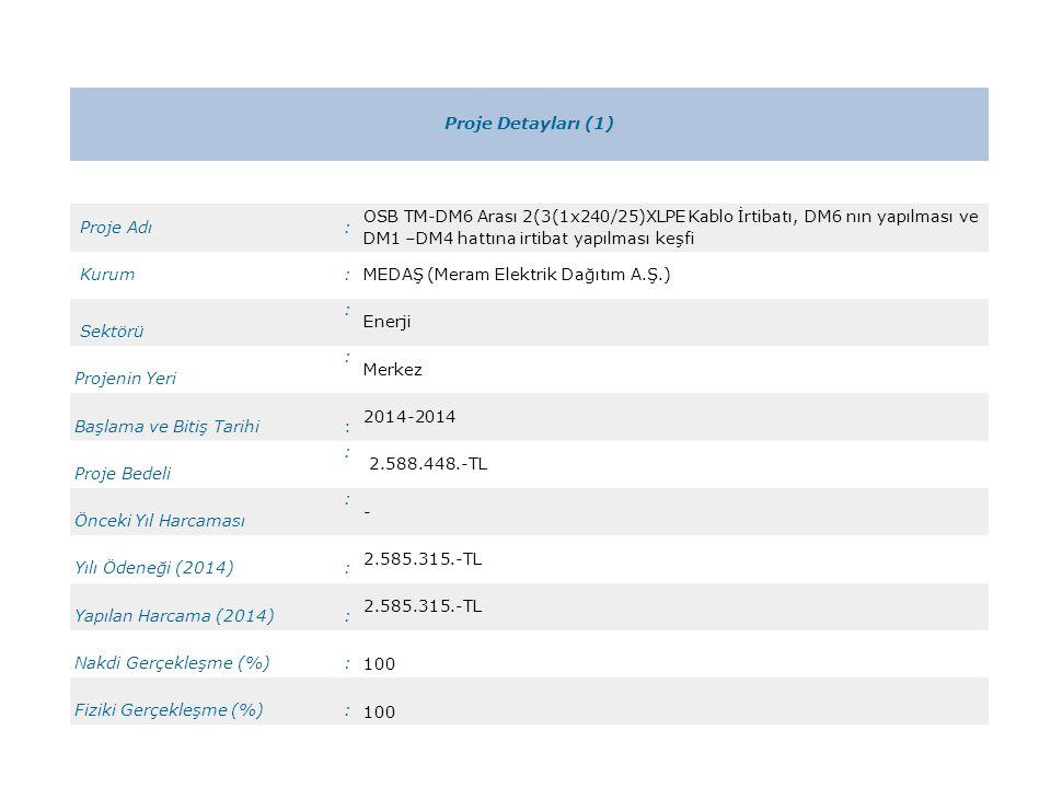 Proje Detayları (1) Proje Adı: OSB TM-DM6 Arası 2(3(1x240/25)XLPE Kablo İrtibatı, DM6 nın yapılması ve DM1 –DM4 hattına irtibat yapılması keşfi Kurum: