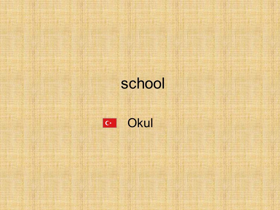 Okul school