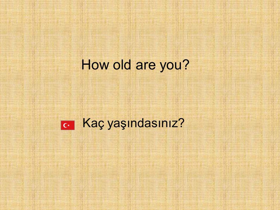 Kaç yaşındasınız? How old are you?
