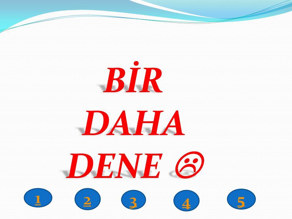 BİR DAHA DENE  1 2 3 4 5