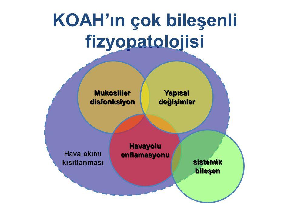 KOAH'ın çok bileşenli fizyopatolojisi Hava akımı kısıtlanması Mukosilierdisfonksiyon Havayoluenflamasyonu Yapısaldeğişimler sistemikbileşen