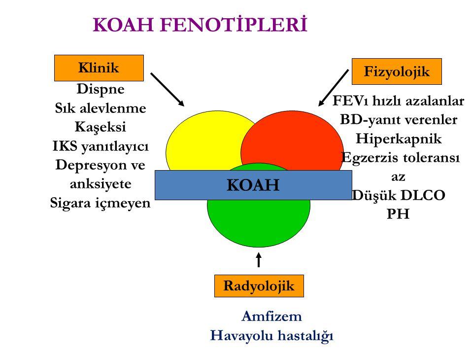 KOAH Klinik Radyolojik Fizyolojik Dispne Sık alevlenme Kaşeksi IKS yanıtlayıcı Depresyon ve anksiyete Sigara içmeyen FEVı hızlı azalanlar BD-yanıt ver