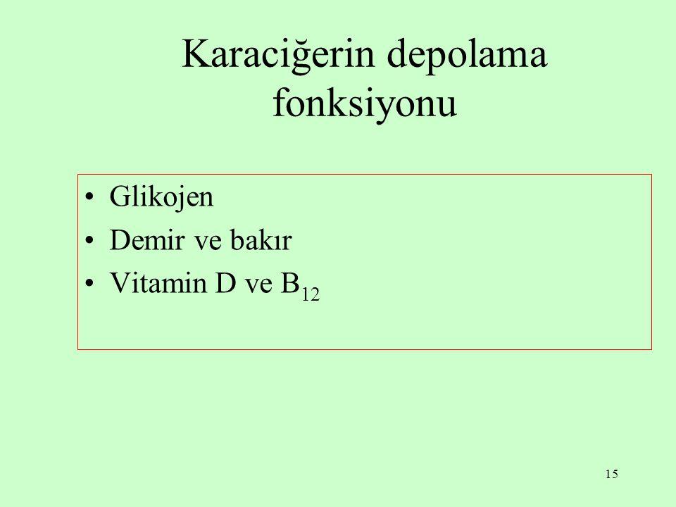 15 Karaciğerin depolama fonksiyonu Glikojen Demir ve bakır Vitamin D ve B 12