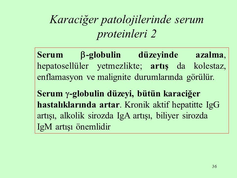 36 Karaciğer patolojilerinde serum proteinleri 2 Serum  -globulin düzeyinde azalma, hepatosellüler yetmezlikte; artış da kolestaz, enflamasyon ve mal