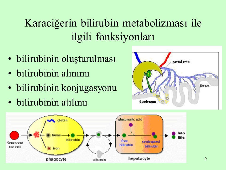 9 Karaciğerin bilirubin metabolizması ile ilgili fonksiyonları bilirubinin oluşturulması bilirubinin alınımı bilirubinin konjugasyonu bilirubinin atıl