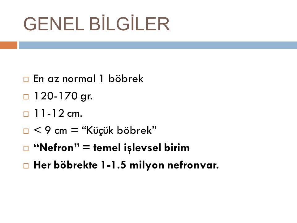 """GENEL BİLGİLER  En az normal 1 böbrek  120-170 gr.  11-12 cm.  < 9 cm = """"Küçük böbrek""""  """"Nefron"""" = temel işlevsel birim  Her böbrekte 1-1.5 mily"""