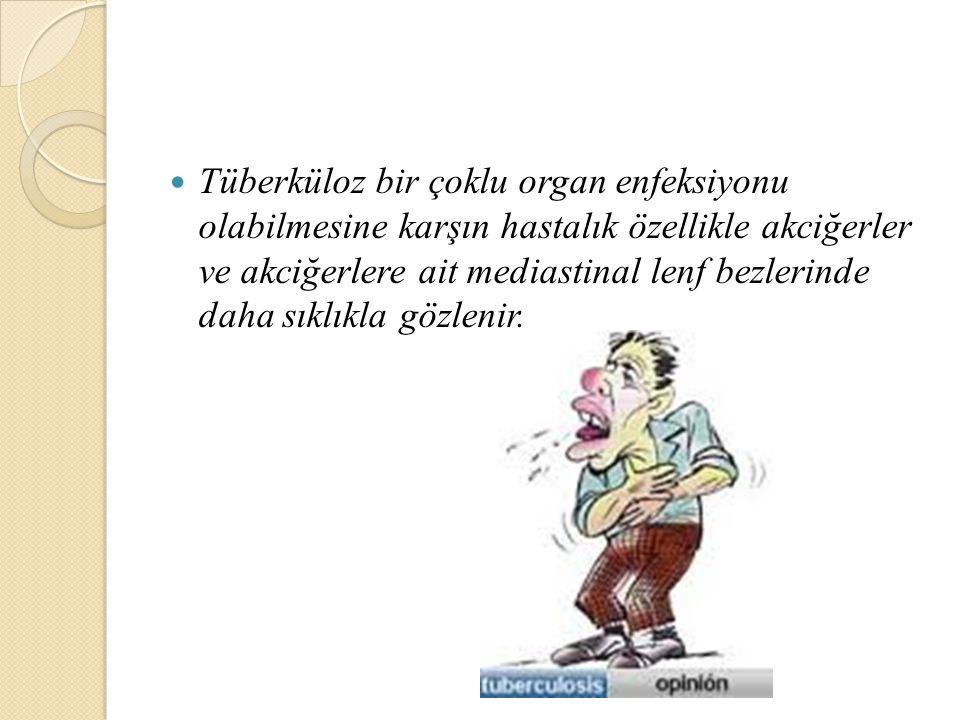 Tüberküloz bir çoklu organ enfeksiyonu olabilmesine karşın hastalık özellikle akciğerler ve akciğerlere ait mediastinal lenf bezlerinde daha sıklıkla