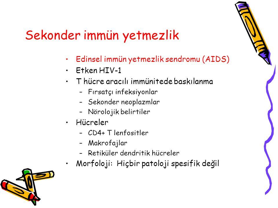 Sekonder immün yetmezlik Edinsel immün yetmezlik sendromu (AIDS) Etken HIV-1 T hücre aracılı immünitede baskılanma –Fırsatçı infeksiyonlar –Sekonder n