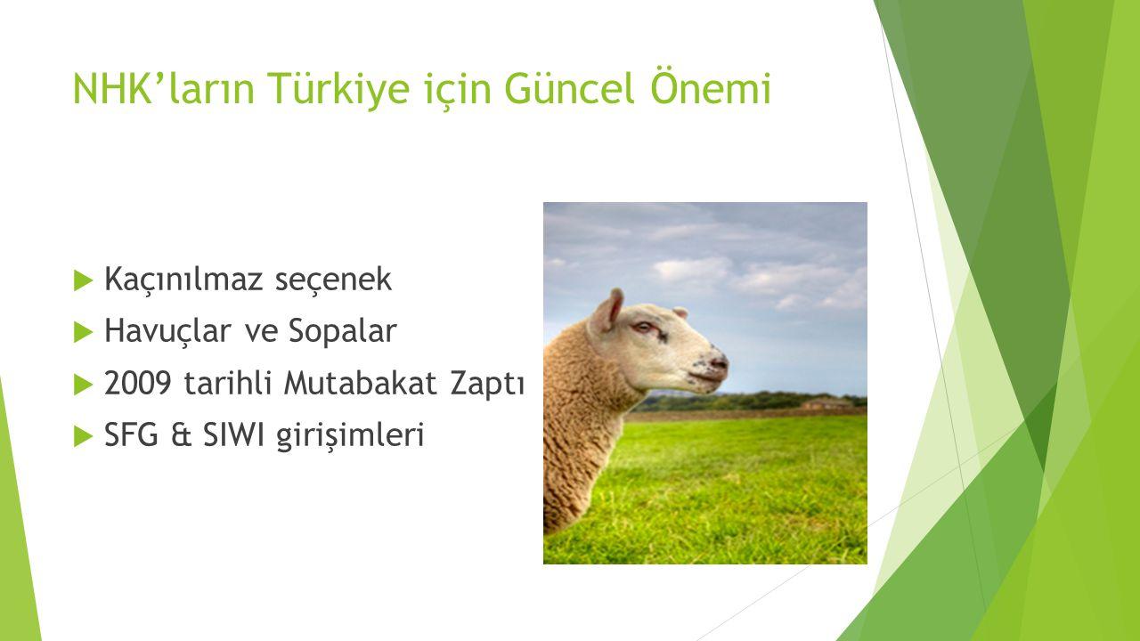 NHK'ların Türkiye için Güncel Önemi  Kaçınılmaz seçenek  Havuçlar ve Sopalar  2009 tarihli Mutabakat Zaptı  SFG & SIWI girişimleri