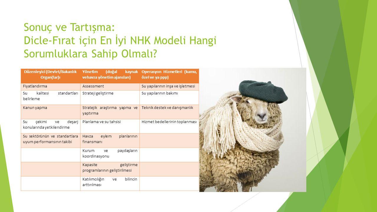Sonuç ve Tartışma: Dicle-Fırat için En İyi NHK Modeli Hangi Sorumluklara Sahip Olmalı.