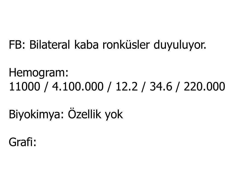 FB: Bilateral kaba ronküsler duyuluyor. Hemogram: 11000 / 4.100.000 / 12.2 / 34.6 / 220.000 Biyokimya: Özellik yok Grafi: