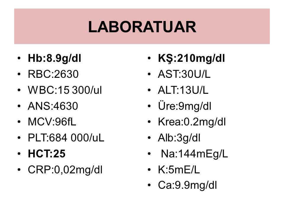 LABORATUAR Hb:8.9g/dl RBC:2630 WBC:15 300/ul ANS:4630 MCV:96fL PLT:684 000/uL HCT:25 CRP:0,02mg/dl KŞ:210mg/dl AST:30U/L ALT:13U/L Üre:9mg/dl Krea:0.2