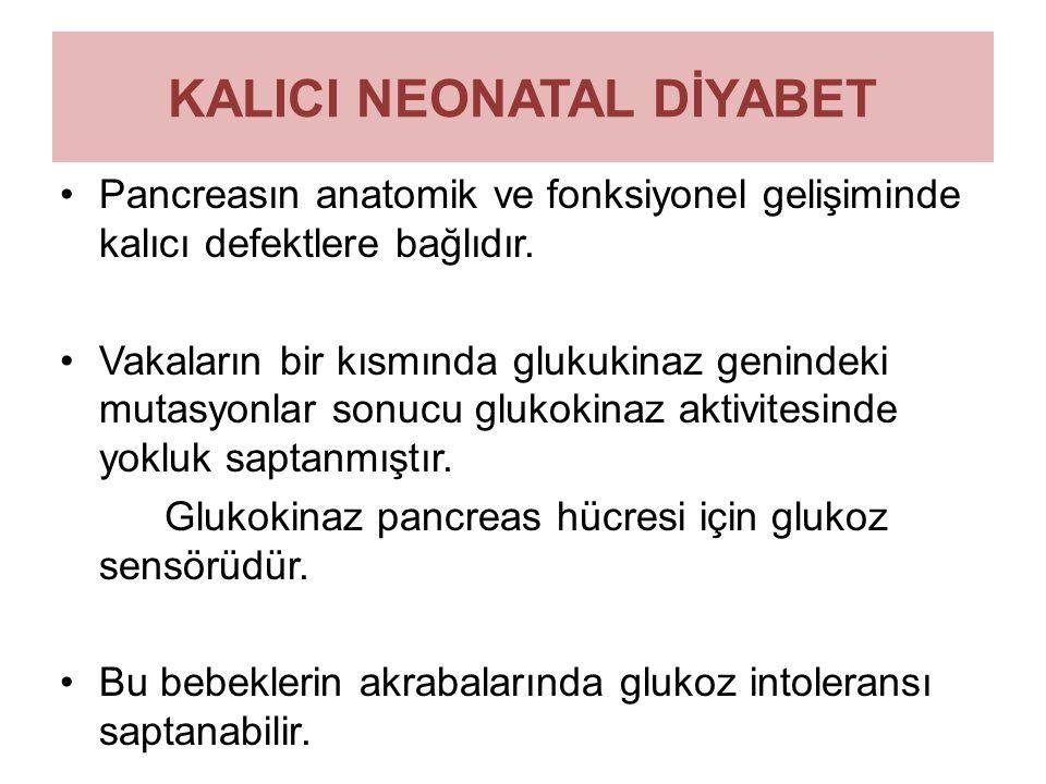 KALICI NEONATAL DİYABET Pancreasın anatomik ve fonksiyonel gelişiminde kalıcı defektlere bağlıdır. Vakaların bir kısmında glukukinaz genindeki mutasyo