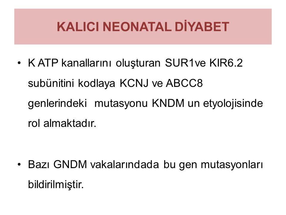 KALICI NEONATAL DİYABET K ATP kanallarını oluşturan SUR1ve KIR6.2 subünitini kodlaya KCNJ ve ABCC8 genlerindeki mutasyonu KNDM un etyolojisinde rol al