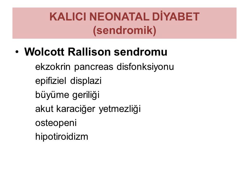 KALICI NEONATAL DİYABET (sendromik) Wolcott Rallison sendromu ekzokrin pancreas disfonksiyonu epifiziel displazi büyüme geriliği akut karaciğer yetmez