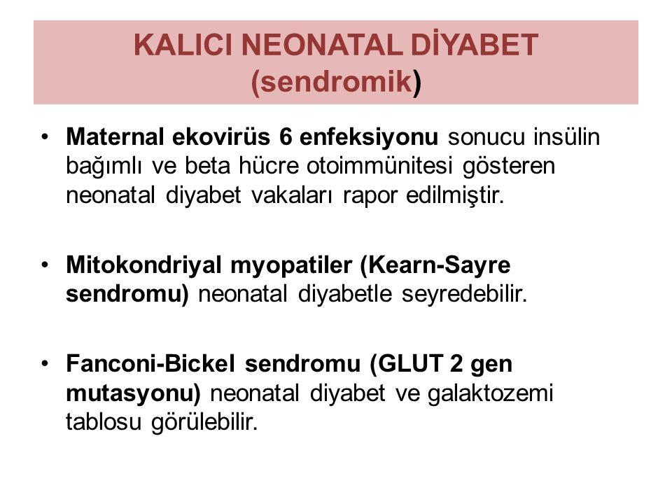 KALICI NEONATAL DİYABET (sendromik) Maternal ekovirüs 6 enfeksiyonu sonucu insülin bağımlı ve beta hücre otoimmünitesi gösteren neonatal diyabet vakal