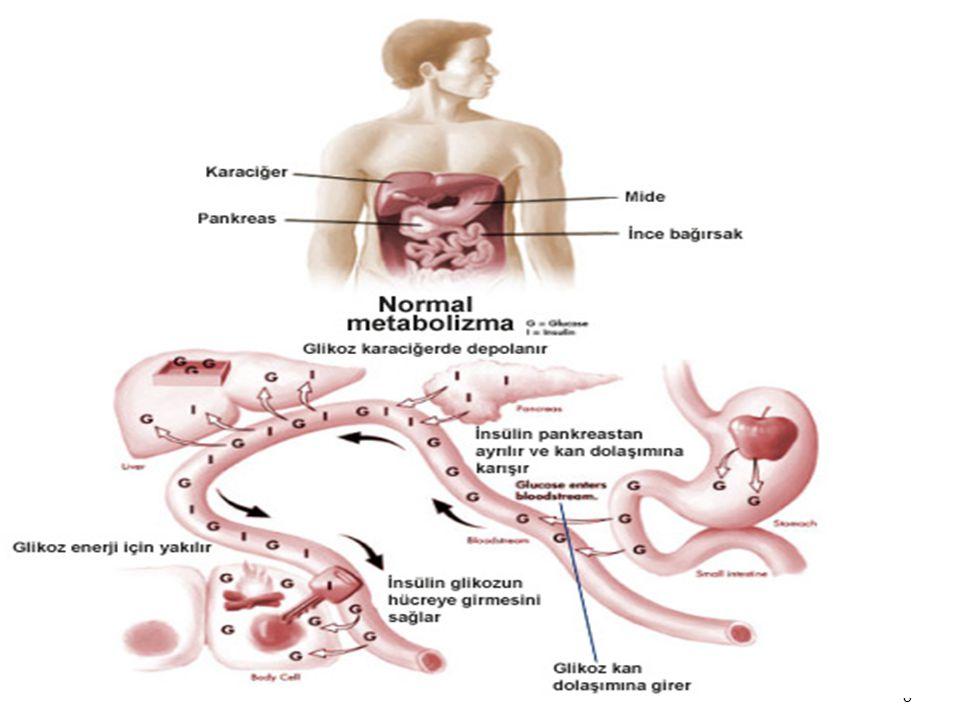 9 9 İnsülin temel olarak hücrelerde glukoz kullanımını arttırıcı etkiye sahiptir.