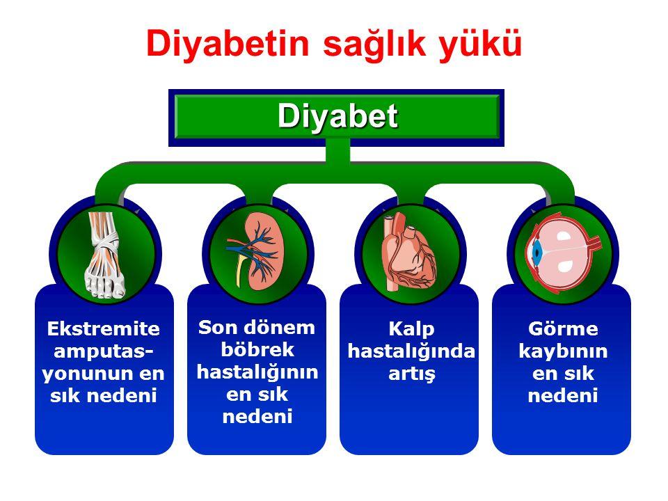 Diyabetin sağlık yükü Diyabet Son dönem böbrek hastalığının en sık nedeni Kalp hastalığında artış Görme kaybının en sık nedeni Ekstremite amputas- yon