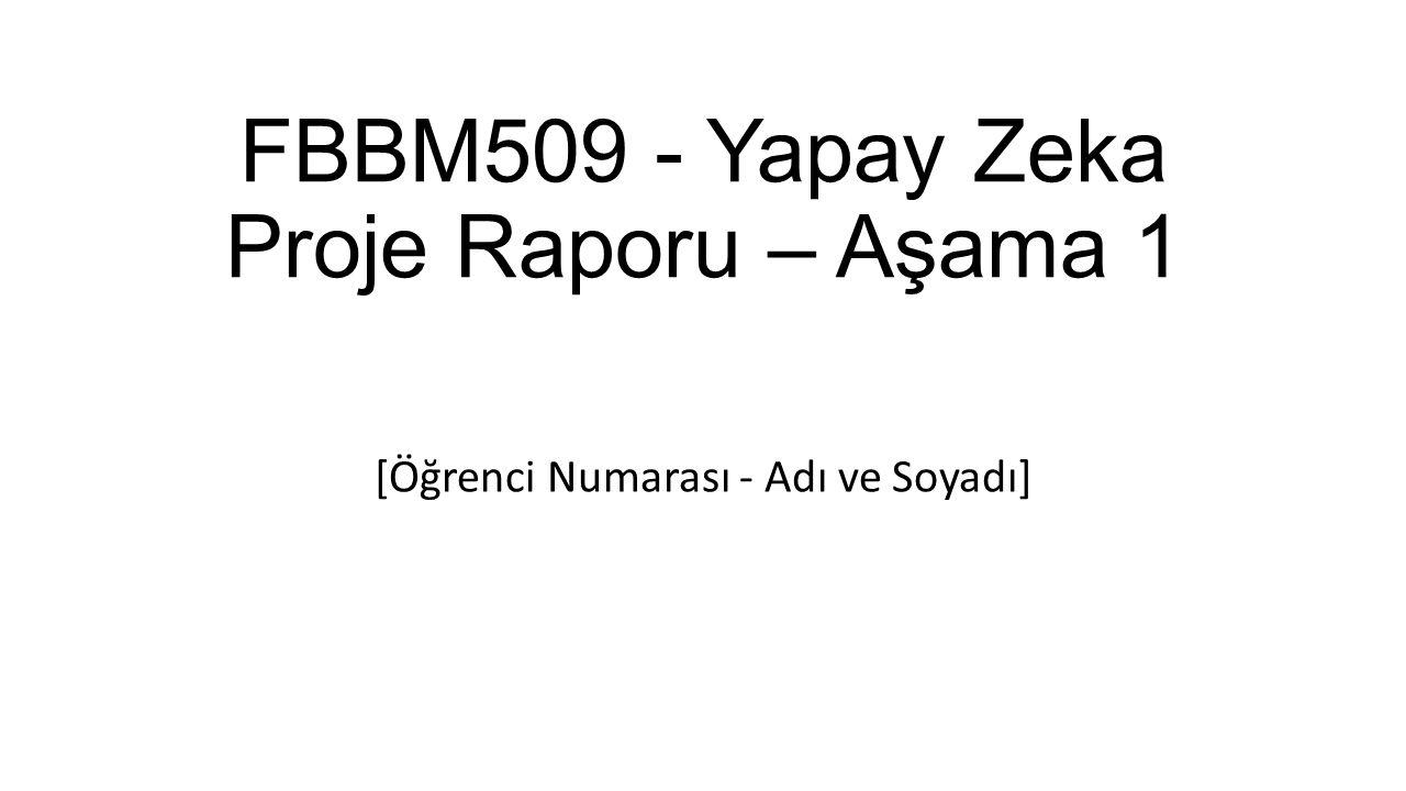 FBBM509 - Yapay Zeka Proje Raporu – Aşama 1 [Öğrenci Numarası - Adı ve Soyadı]