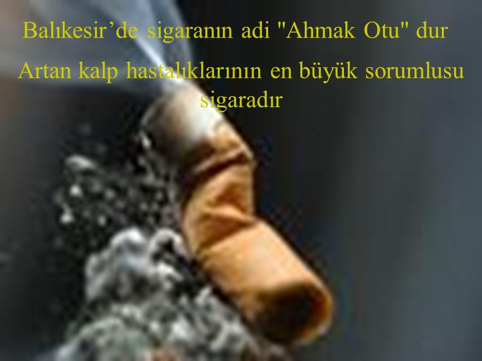 Balıkesir'de sigaranın adi Ahmak Otu dur Artan kalp hastalıklarının en büyük sorumlusu sigaradır
